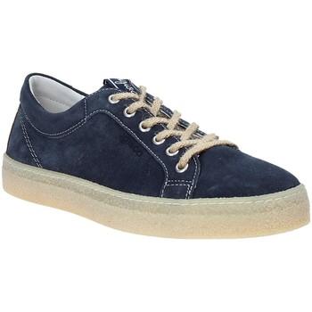 Sko Herre Lave sneakers IgI&CO 3134511 Blå