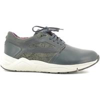 Sko Herre Lave sneakers Alberto Guardiani SU73452D Blå