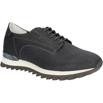 Sko Herre Lave sneakers Alberto Guardiani SU744559A Blå
