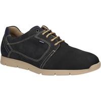 Sko Herre Lave sneakers Baerchi 5080 Blå