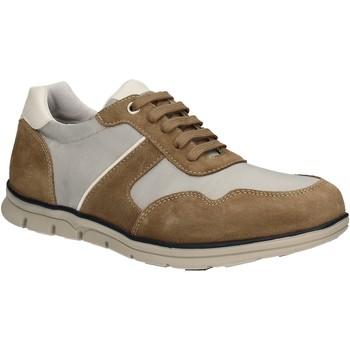 Sko Herre Lave sneakers Keys 3071 Brun