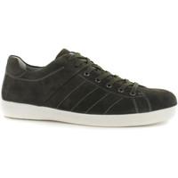 Sko Herre Lave sneakers Stonefly 108541 Grøn