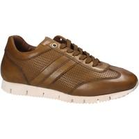 Sko Herre Lave sneakers Maritan G 140557 Gul