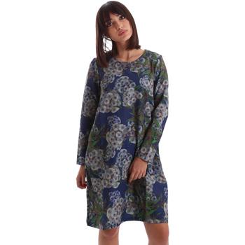 textil Dame Korte kjoler Gazel AB.AB.ML.0026 Blå