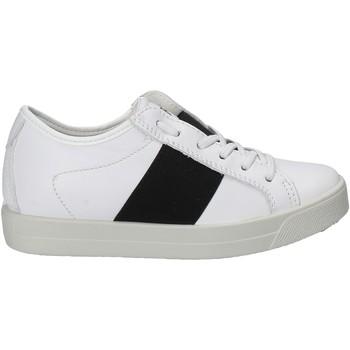 Sko Børn Lave sneakers Primigi 7579 hvid