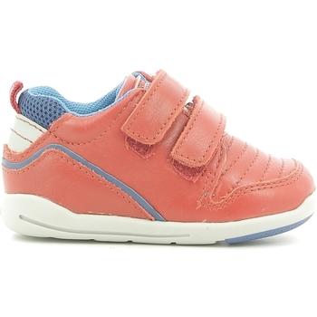 Sko Børn Lave sneakers Chicco 01056499000000 Rød