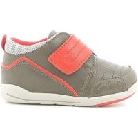 Sko Børn Lave sneakers Chicco 01056498000000 Brun