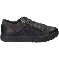 Sko Herre Lave sneakers IgI&CO 2131200 Sort