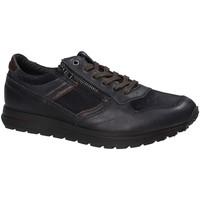 Sko Herre Lave sneakers IgI&CO 2136466 Blå