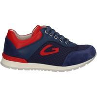 Sko Børn Lave sneakers Alberto Guardiani GK23301 Blå
