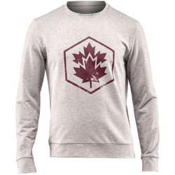 textil Herre Sweatshirts Lumberjack CM60142 001 502 Grå