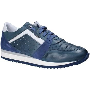 Sko Herre Lave sneakers Exton 558 Blå