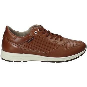 Sko Herre Lave sneakers Enval 1211422 Brun