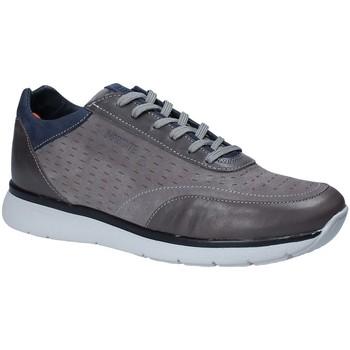 Sko Herre Lave sneakers Impronte IM181023 Grå