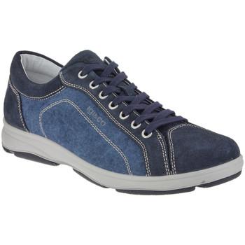 Sko Herre Lave sneakers IgI&CO 1113 Blå