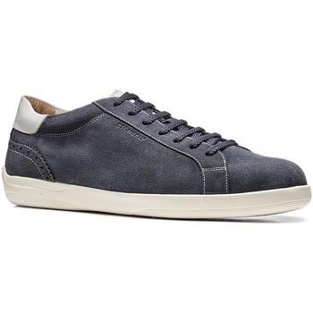 Sko Herre Lave sneakers Stonefly 110645 Blå