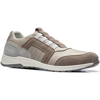 Sko Herre Lave sneakers Stonefly 110791 Brun