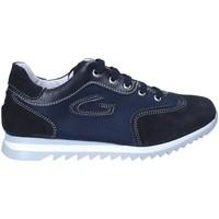 Sko Dreng Lave sneakers Guardiani GK25343G Blå