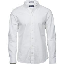 textil Herre Skjorter m. lange ærmer Tee Jays TJ4000 White