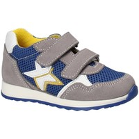 Sko Børn Lave sneakers Melania ME1175B8E.C Grå