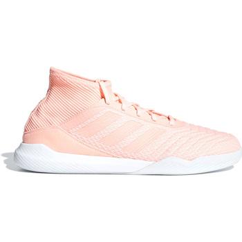 Sko Herre Fodboldstøvler adidas Originals DB2302 Lyserød