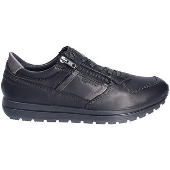 Sko Herre Lave sneakers IgI&CO 2136400 Sort