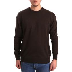 textil Herre Pullovere Navigare NV11005AD30 Brun