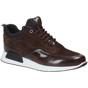 Sko Herre Lave sneakers Exton 162 Brun