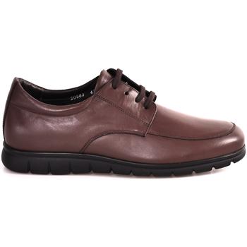 Sko Herre Lave sneakers Soldini 20583 P Brun