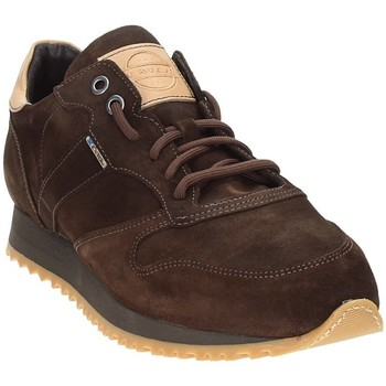 Sko Herre Lave sneakers Exton 777 Brun