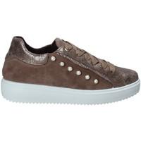 Sko Dame Lave sneakers IgI&CO 2153922 Brun