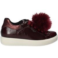 Sko Dame Lave sneakers IgI&CO 2154844 Rød