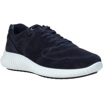 Sko Herre Lave sneakers IgI&CO 5123733 Blå