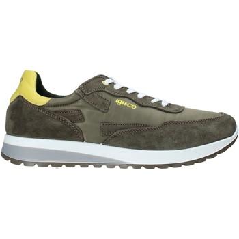 Sko Herre Lave sneakers IgI&CO 5127433 Grøn