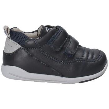 Sko Børn Lave sneakers Chicco 01058510 Blå