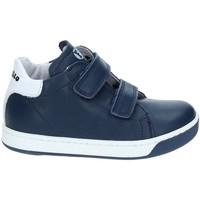 Sko Børn Lave sneakers Falcotto 2012363-01-9104 Blå