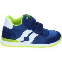 Sko Børn Lave sneakers Falcotto 2012380-01-9105 Blå