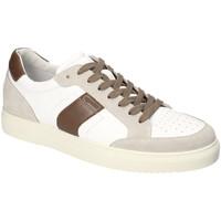 Sko Herre Lave sneakers IgI&CO 3132922 hvid