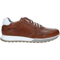 Sko Herre Lave sneakers Rogers 5065 Brun