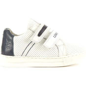 Sko Børn Lave sneakers Lumberjack SB22405 004 P16 hvid