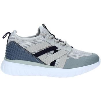 Sko Børn Lave sneakers Fred Mello S19-SFK133 Grå