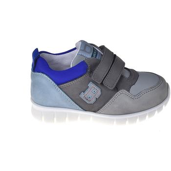 Sko Børn Lave sneakers Balducci CSPO3305 Grå