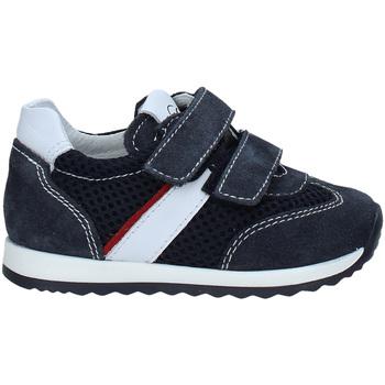 Sko Børn Lave sneakers Nero Giardini P923452M Blå