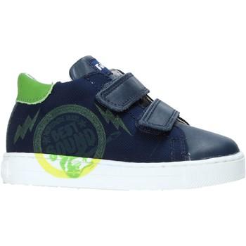 Sko Børn Lave sneakers Falcotto 2013622-01-1C38 Blå