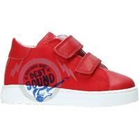 Sko Børn Lave sneakers Falcotto 2013622-01-1H02 Rød