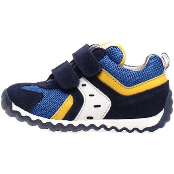 Sko Børn Lave sneakers Naturino 2013741-01-1C81 Blå