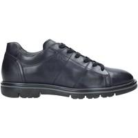 Sko Herre Lave sneakers Nero Giardini A901160U Blå
