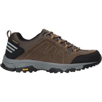 Sko Herre Lave sneakers Lumberjack SM71811 001 M02 Brun