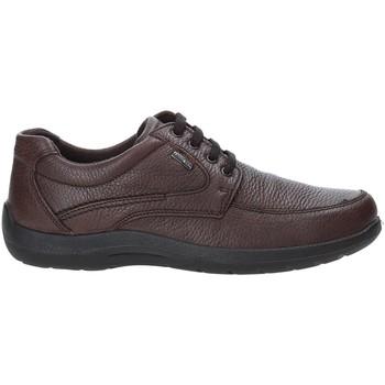 Sko Herre Lave sneakers Enval 4233511 Brun
