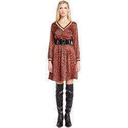 textil Dame Korte kjoler Denny Rose 921ND15008 Rød